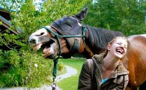 laughing horse mom
