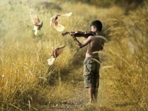 serenade boy