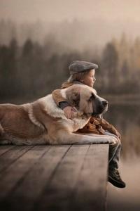 dog n boy on dock