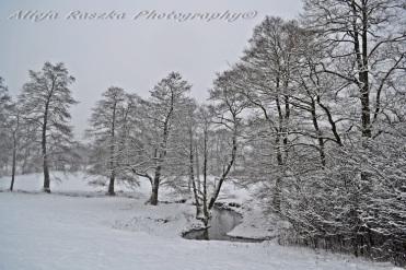 winter pastoral