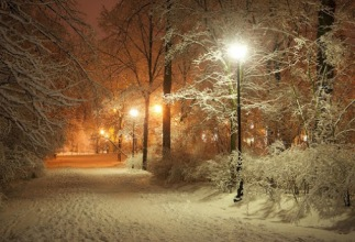 magic of a snowy night