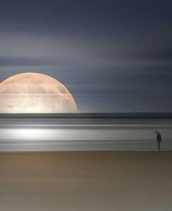 beach-moon